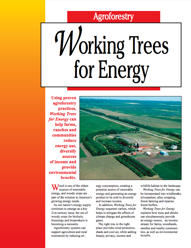 Working Trees for Energy